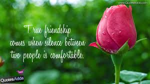 Best Friend Wallpaper by Best Friend Wallpapers Quotes Wallpapersafari