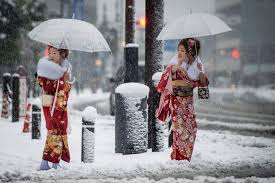 november tokyo first november snow in tokyo for 54 years album on imgur