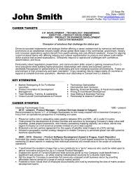 Sample Resume For Product Manager by Cvs Resume Example Account Manager Cv Template Sample Job