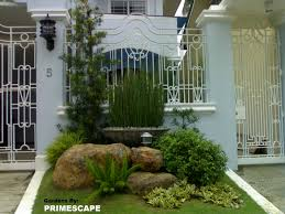 landscape surprising plants for front of house decor low