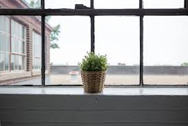 Wooden Interior Window Sill Free Images Plant Wood Home Wall Balcony Window Sill