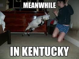 Kentucky Meme - meanwhile in kentucky misc quickmeme