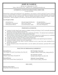 examples of resume u2013 inssite