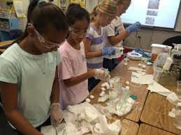real life science houston academy