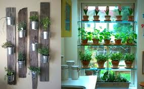 herb garden indoor hanging kitchen herb garden down cucumbers wall herb garden outdoor