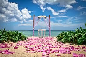 Beach Wedding Treasure Coast Beach Weddings Wedding Bells U0026 Seashells