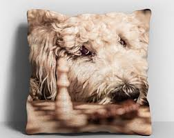 Decorative Dog Pillows Goldendoodle Pillow Etsy