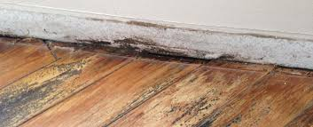 Water Damaged Laminate Flooring One Stop Restoration Water Damage Mold Removal U0026 Cleaning Services