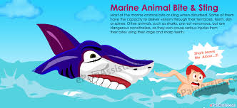 marine animal bite jpg