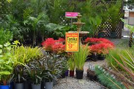 native plant centre vadoulis garden centre adelaide