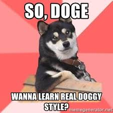 Meme Generator Doge - so doge wanna learn real doggy style cool dog meme generator