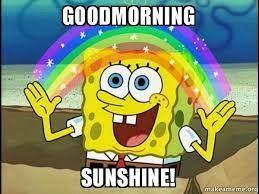 Good Morning Sunshine Meme - best good morning sunshine meme images funny cute silly good