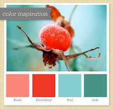 pink red blue and jade color palette aqua color palettes and