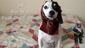 ewok dog costume youtube