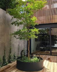 courtyard designs best 25 courtyard design ideas on courtyard