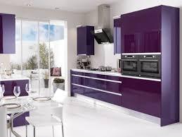 Interior Design Ideas Kitchen Color Schemes Purple Kitchen Cabinets Modern Kitchen Color Schemes