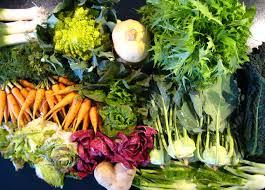 what fall veggies to plant in sacramento