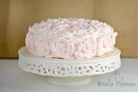 showstopper valentine cake briana thomas