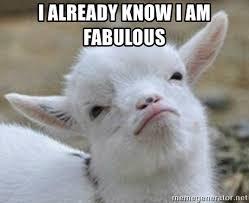 I Am Fabulous Meme - i already know i am fabulous baby goat 101 meme generator