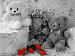 cute teddy bear black and white wallpapers black and white