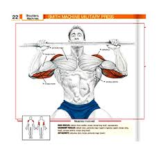 Muscles Used During Bench Press Gym Equipment Guide For Beginners Names And Pictures