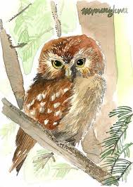 printable owl art 391 best gufi owls images on pinterest drawings owl