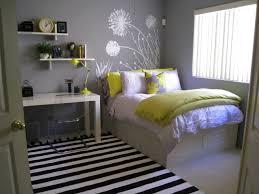 Bedroom Ideas For Teenage Girls Bedrooms Splendid Little Bedroom Themes Teen Room Decor