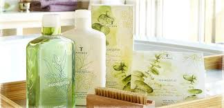 thymes candles thymes sweet magnolia gifts and flowers glenside pennsylvania
