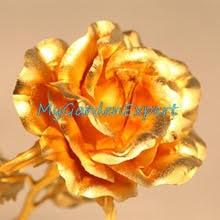 Golden Roses Popular Golden Roses Seeds Buy Cheap Golden Roses Seeds Lots From