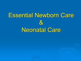 obstetric emergencies and neonatal care ppt video online download