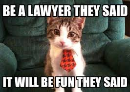 Lawyer Cat Meme - three things you re never supposed to admit about law