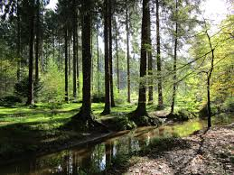 Maria Hilf Bad Neuenahr Wanderblog U2013 Seite 2 U2013 Wandern Wanderberichte Und Mehr U2026 Das