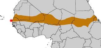 Dakar Senegal Map Dakar U2013 Senegal Daily