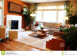 cozy living room stock images image 6329634
