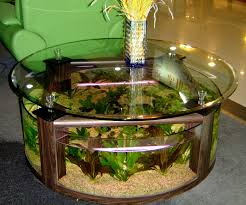 cool nuance of the circular fish tank that decorated with white