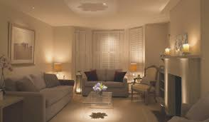 living room cozy elegant living rooms home design very nice