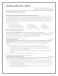 hr manager resume hr manager resume pdf human resources management free sle