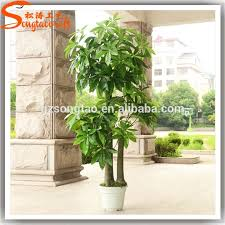 decorative indoor plants all types of decorative indoor plants plastic plants artificial