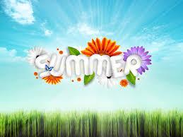 summer desktop hd wallpaper 2013 u2013 coddu code do