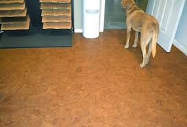 Best Flooring With Dogs Best Laminate Flooring With Dogs Wood Floors Pre Engineered