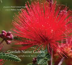 native iowa plants the gottlieb native garden g2 gallery