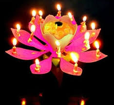lotus birthday candle blossom lotus flower candle birthday party cake musical