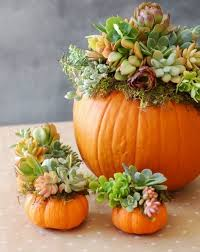 Table Centerpieces For Thanksgiving Best 25 Thanksgiving Table Ideas On Pinterest Fall Table