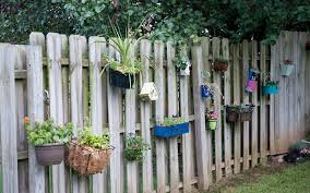 gallery of hanging wall garden catchy homes interior design ideas