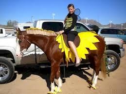 Horse Jockey Halloween Costume Aqha Ideas Horse U0027s Halloween Costume