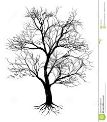 images for dead oak tree drawing 树