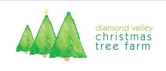 diamond valley christmas tree farm 103 photos 15 reviews