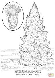 palm tree on a beach coloring page printable pages click the
