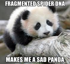 Sad Spider Meme - fragmented spider dna makes me a sad panda sad panda meme generator