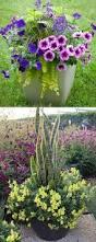 plant balcony planters tremendous balcony railing planters